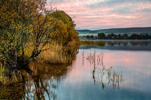 autumn lakedistrict trees lake ullswater autumninthelakedistrict autumncolour sunrise sunrisecolours nature