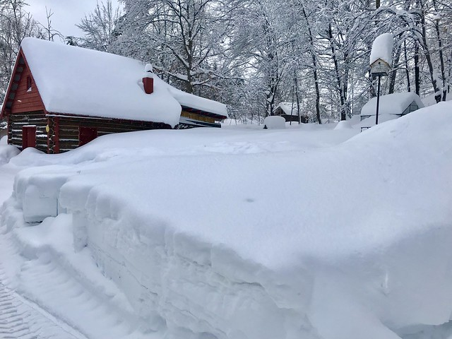 Fluffy piles of snow - Clarksburg, February 2019