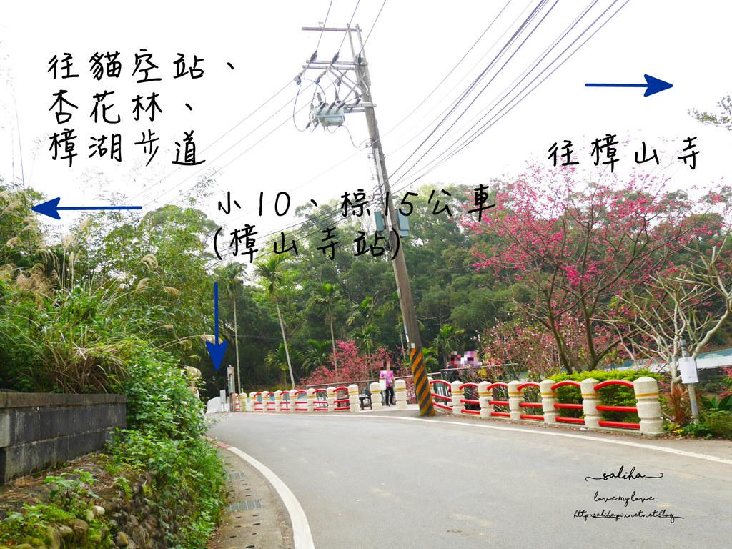 台北一日遊貓空貓纜附近景點爬山推薦