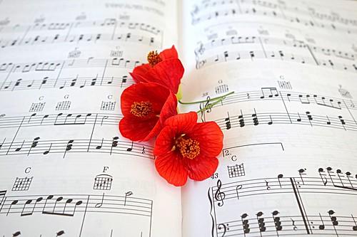 Music and three  flowers