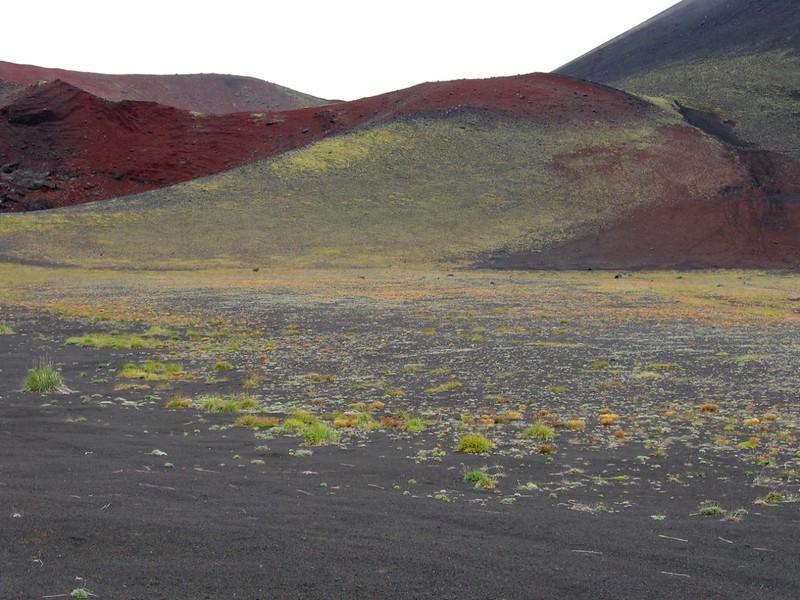 Один из конусов Большого трещинного Толбачинского извержения
