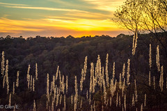 Sunset at Mammoth Cave National Park