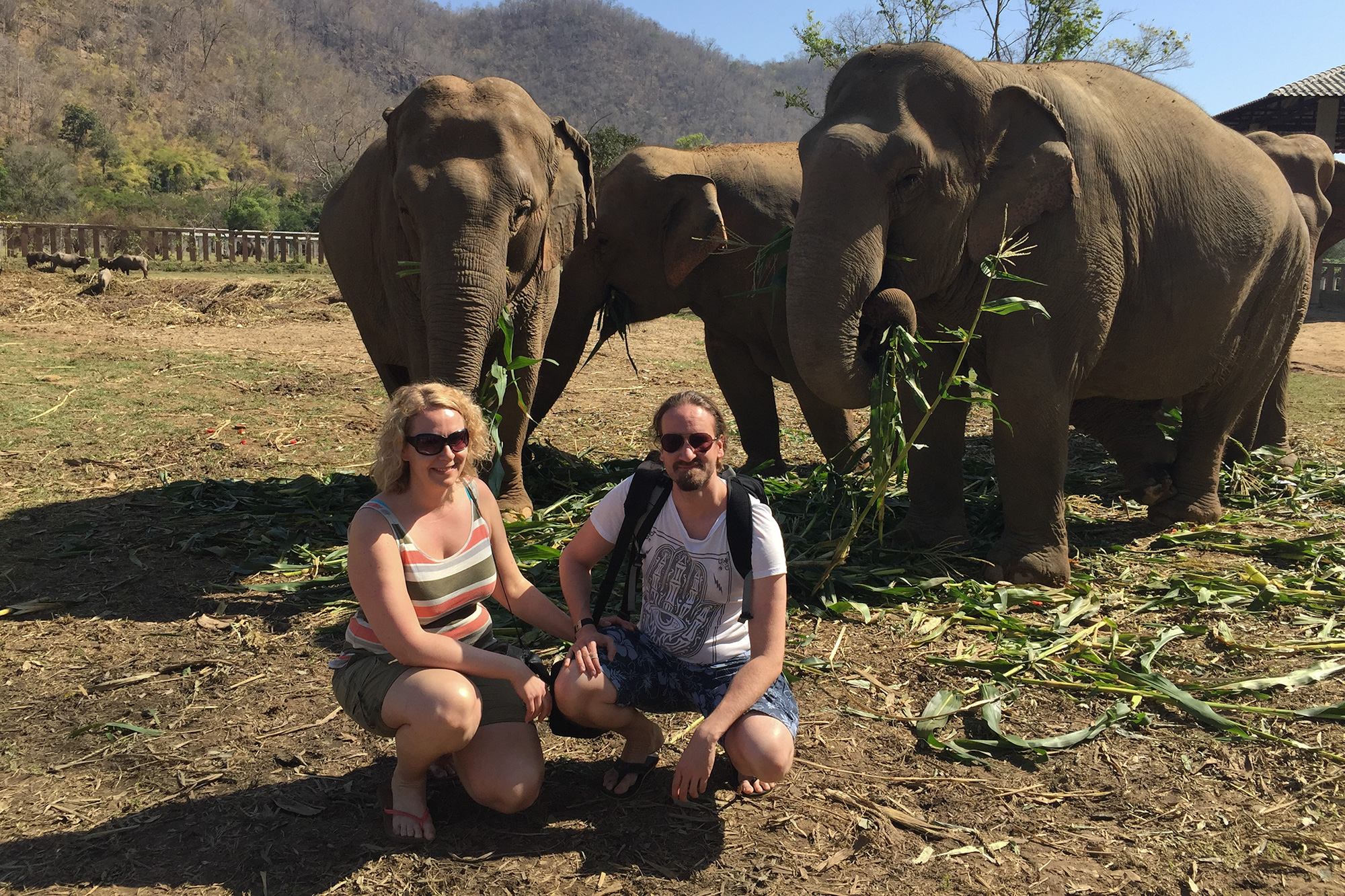 Elephant_Nature_Park9