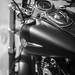 B&W Harley badge by jean.poitiers