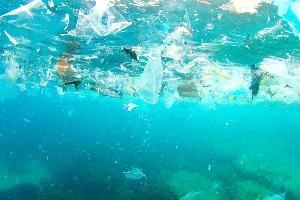 Полупрозрачный мусор создаёт парниковый эффект