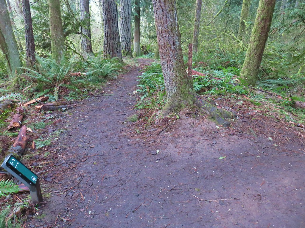 Old Wagon Trail junction with the Mink Path