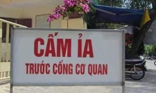 cam_ia
