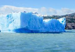 Icebergs on Lago Argentino