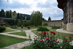 Rumanía. Bucovina. Monasterio de Sucevita (23)