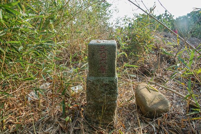 鹿陶洋山三等三角點(# 306 Elev. 262 m) 1