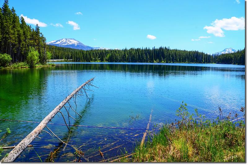 Herbert Lake (7)