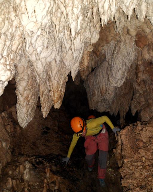 beanintransit-lobo-cave-9