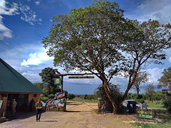 Танзания, нацпарк Микуми