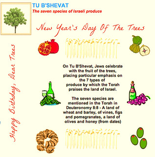 Happy Birthday, Dear Trees  >><<  This Coming Sunday Evening Is Tu B'Shevat >><< New Year's Day Of The Trees | by Chic Bee