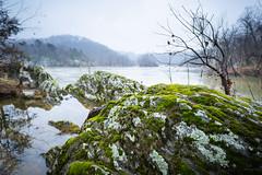 Mossy Rock by Potomac River