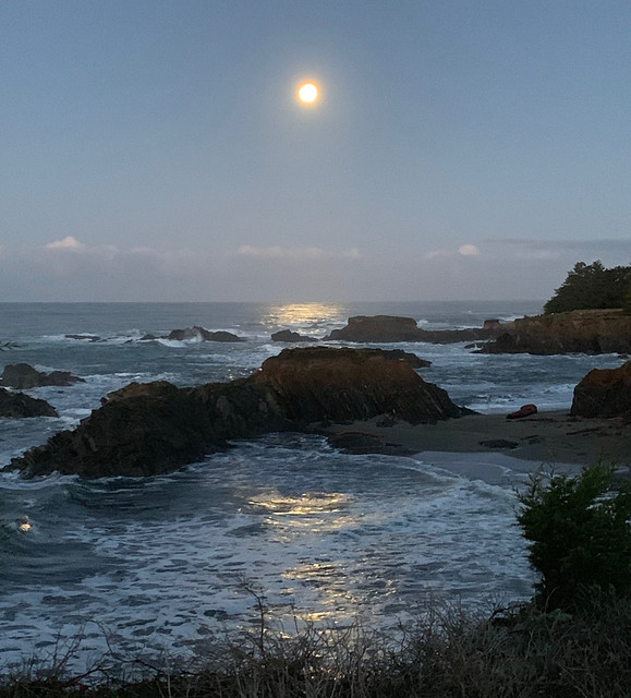 2019 Sea Ranch - Day 4