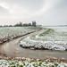 Dutch polder in wintertime by RuudMorijn-NL
