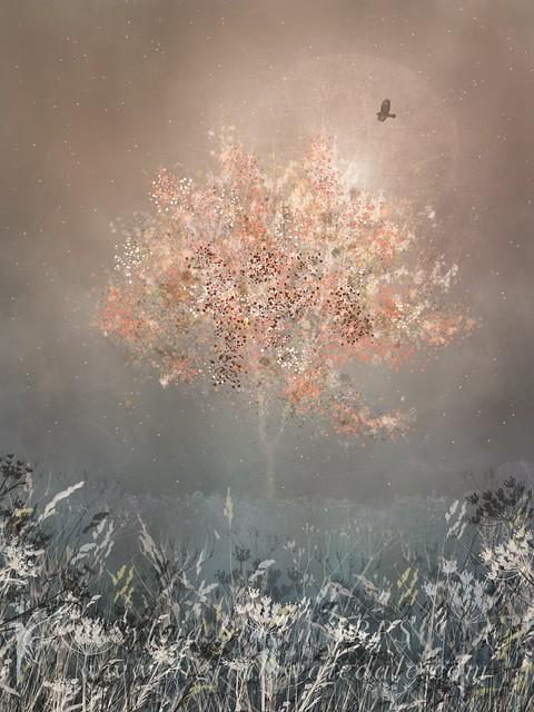 Lone Tree in Autumn