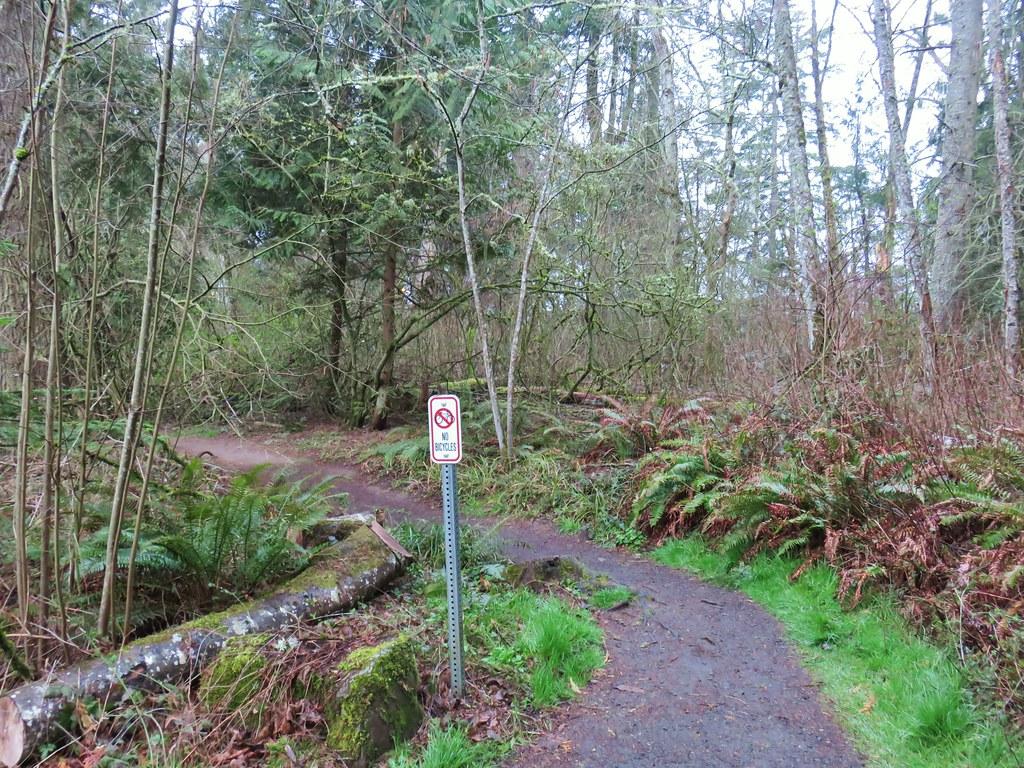 Old Wagon Trail