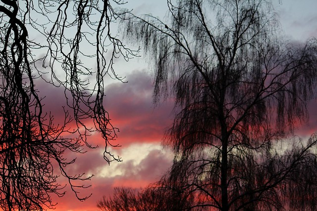 Sonnenaufgang...(Explore), Canon EOS 650D, Canon EF-S 55-250mm f/4-5.6 IS