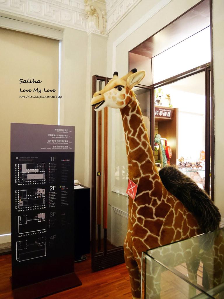 台北車站附近好玩親子景點恐龍博物館門票台博館土銀展示館 (13)