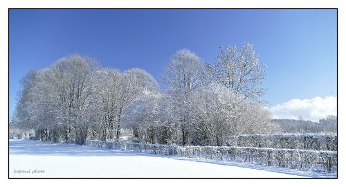 Winterlandschaft, Hauset/Belgien