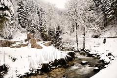 La cascade de la Frasnée (Jura)