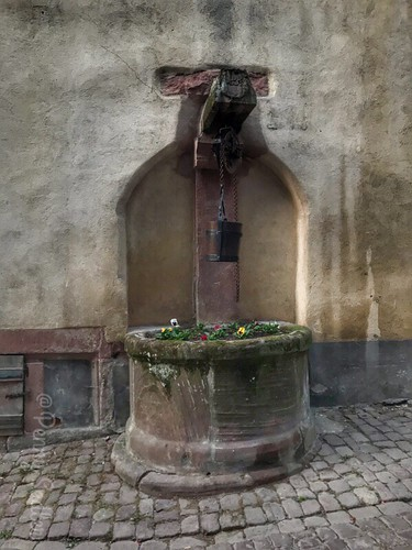 The History and Architecture of Riquewihr in Photos. There are many fountains you can see in various places around the village
