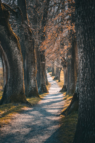 Beautiful walking path in Murnau from Toni Hoffmann