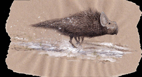 Speculative ceratopsian in full fur coat