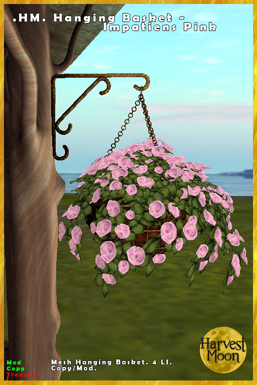 Harvest Moon – Hanging Basket – Impatiens Pink