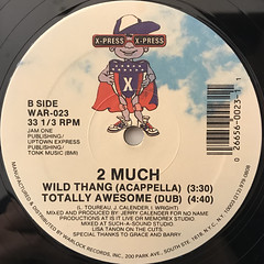 2 MUCH:WILD THING(LABEL SIDE-B)