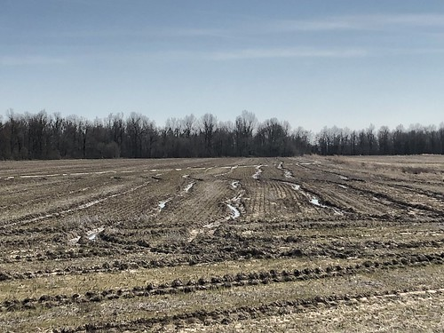Rutted fields, Lawrence County