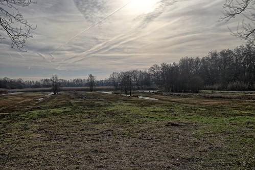 20190213 013 tm 17 Koningslust wandeling Vlakbroek