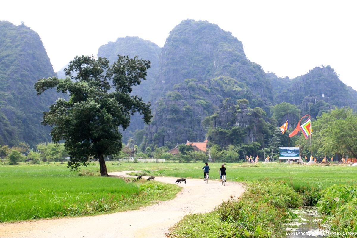 Vietnam_033