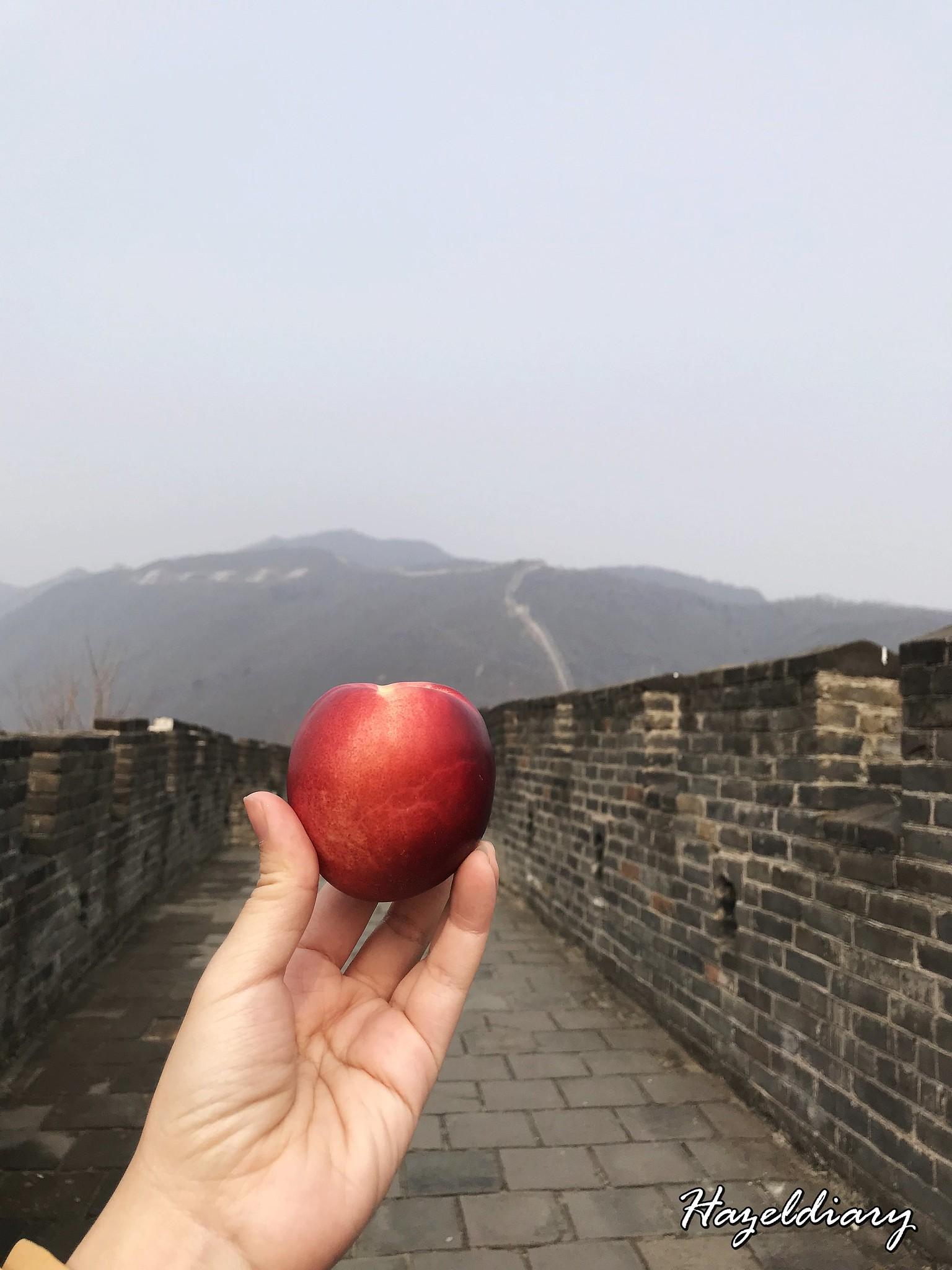 The Great Wall of China Mutianyu-8