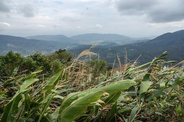 四林山山頂展望