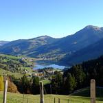 Lac Noir - La Roche
