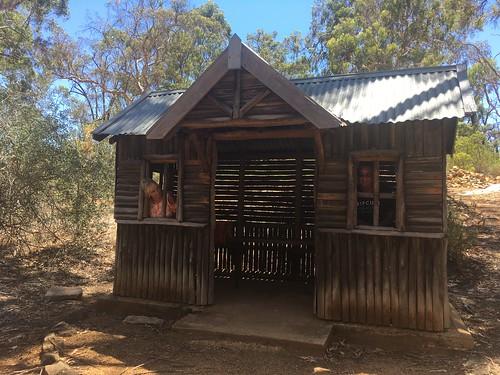 John Forrest national park in 45•