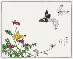 Butterflies and flowers illustration from Churui Gafu (1910) by