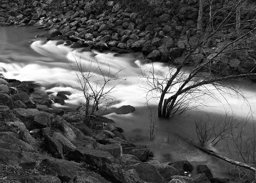 Santa Rosa Creek Monotone