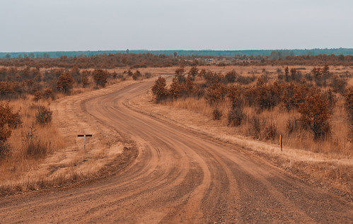 Crex Meadows Dirt Road - Wisconsin