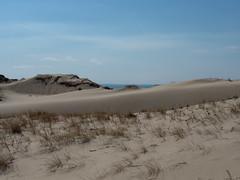 Great Island - dunes 2