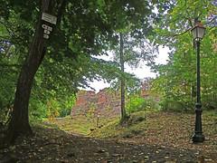 Retour au Château - Photo of Singrist