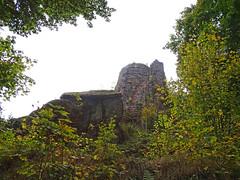Le château de Freudeneck - Photo of Singrist