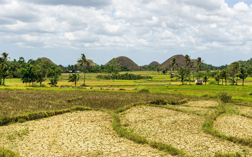 Around the Chocolate hills