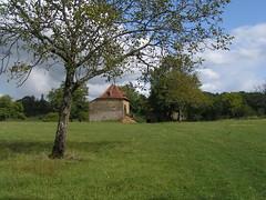 20080912 36033 1013 Jakobus Baum Wiese Steinhaus - Photo of Cuzac