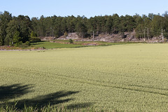 Close_By 1.17, Fredrikstad, Norway
