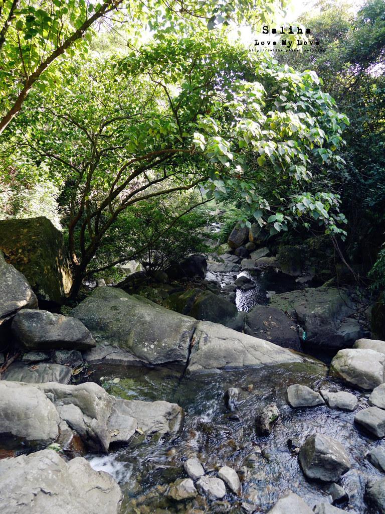 宜蘭礁溪秘境推薦猴洞坑瀑布白石腳步道 (2)