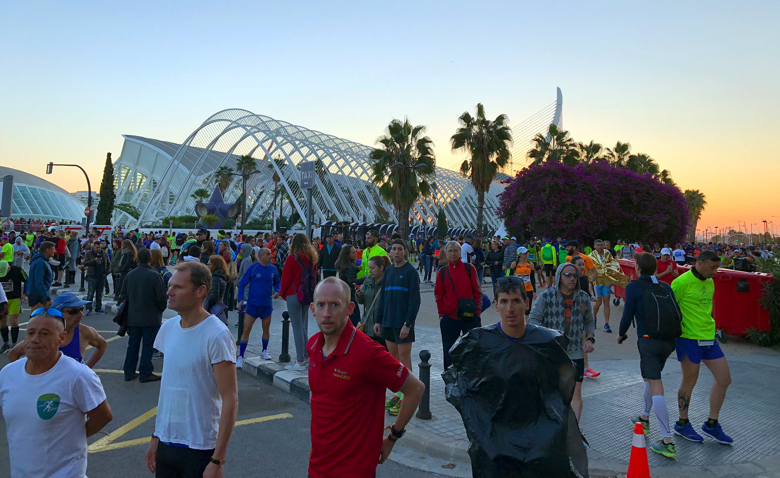 Correr el Maratón de Valencia, España - Marathon Spain maratón de valencia - 40234009223 98845a9ccd h - Maratón de Valencia: análisis, recorrido, entrenamiento y recomendaciones de viaje